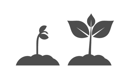 Spring seedlings plants icons. Vector illustration.