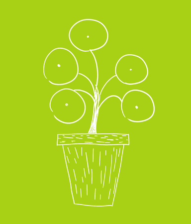 Pilea peperomioides also known as money plant growing in pot. Doodle drawing white line illustration