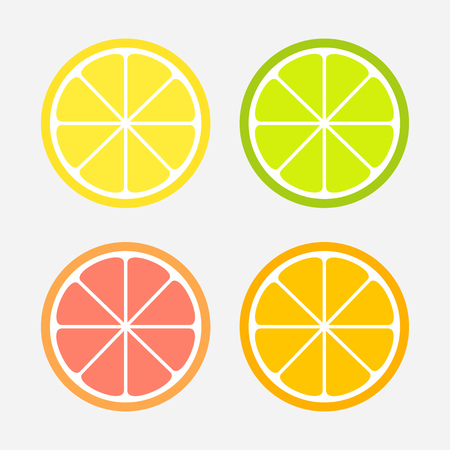 Citrus slices set: lemon, orange, lime and grapefruit. Vector illustration