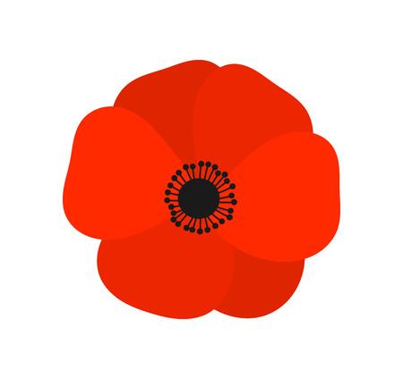 Flor de amapola roja. Ilustración vectorial