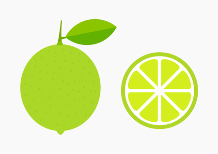 Green lime citrus fruit and slice icons. Vector illustration. 矢量图像