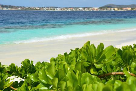 Beach at Klein Bonaire island, Netherland Antilles, Caribbean. Imagens