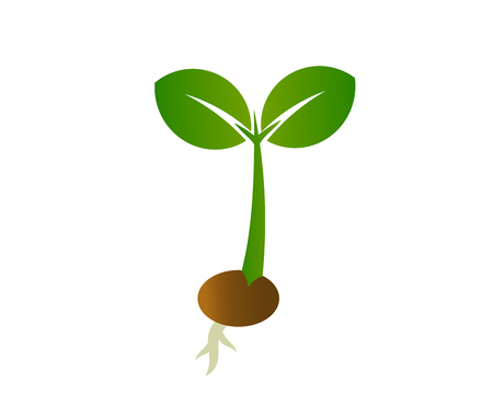 Spring germinating seedling. Little plant icon. Vector illustration.