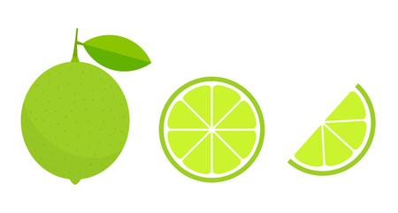 Green lime citrus fruit and slice icons. Vector illustration. Ilustração