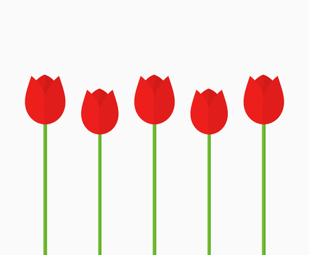 Red tulip flowers background. Vector illustration.