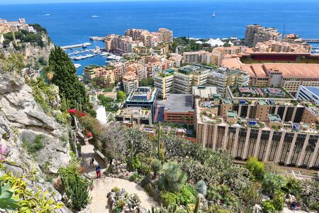 Scenic view on Monaco, Fontvieille from beautiful exotic garden.