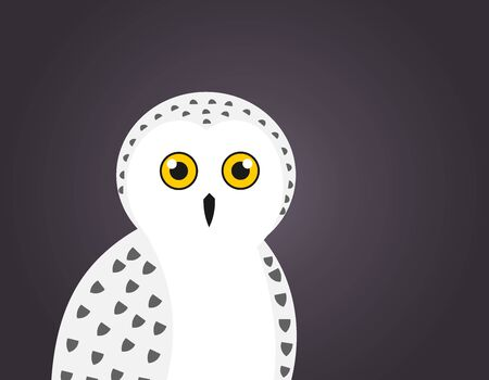 Cute white snowy owl portrait on dark night background. Vector illustration.
