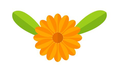 Orange Calendula flower with leaves symbol. Vector illustration. Ilustracja