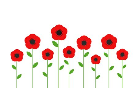 Red poppies flowers. Vector illustration.