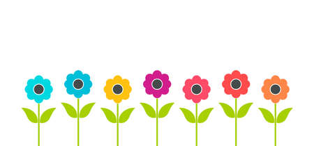 Colorful flat flowers growing in the garden. Summer vector illustration.