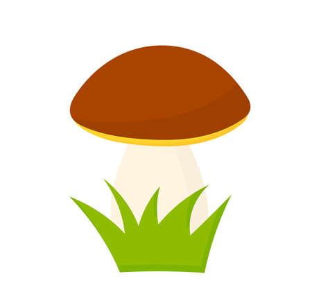 Cep boletus forest mushroom cartoon style illustration. Vector design element.