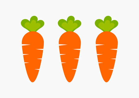 Three healthy carrots from vegetable garden. Raw food diet vector. 向量圖像