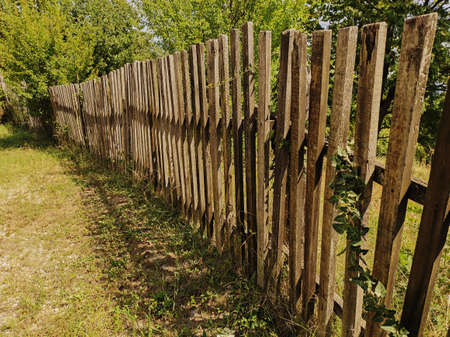 Fence made of wooden slats.