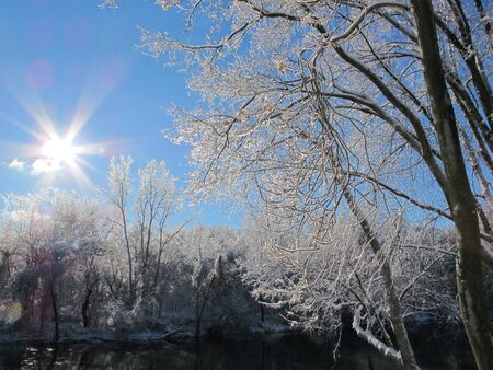 ice storm: The sun shines the day after an ice storm
