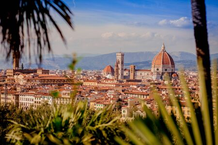 panorama to the old city of Florence