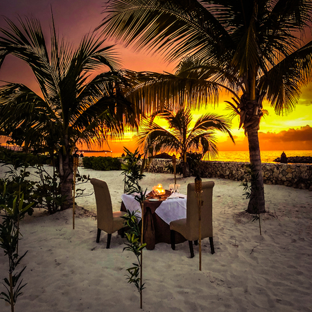 Beautiful seascape evening sunset sea and sky horizon Hawaii. Palms with sunset
