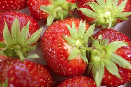Fresh Strawberries Stock Photo - 15572140