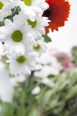 Flower cuttings being prepared to be arranged to make a bouquet. Stock Photo - 15572096