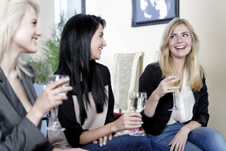 female friends enjoying a drink together at a wine bar. Stock Photo - 16217711