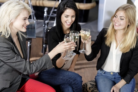 female friends enjoying a drink together at a wine bar. Stock Photo - 16217566