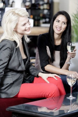 female friends enjoying a drink together at a wine bar. Stock Photo - 16217676