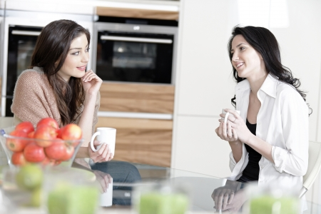 Two friends in a kitchen catching up and having fun. Stock Photo