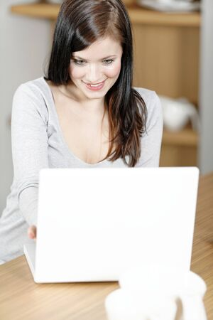 Attractive young woman in her elegant kitchen taking a break with her laptop Stock Photo - 18919716