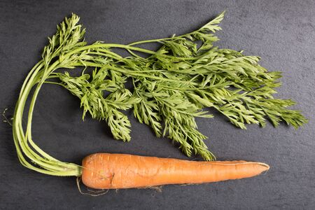 vida natural: Fresh raw carrots on black slate with complete stems