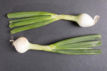 onion: Gran fresco cebolleta prima en la pizarra negro con espacio de copia Foto de archivo