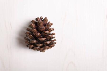 pomme de pin: c�ne de pin sur une surface en bois clair avec copie espace