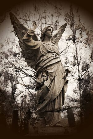 old stone angel photo