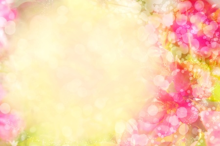 floral background Stock Photo - 13053039