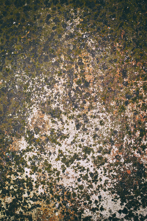 hideous: old rusty metal plate for background