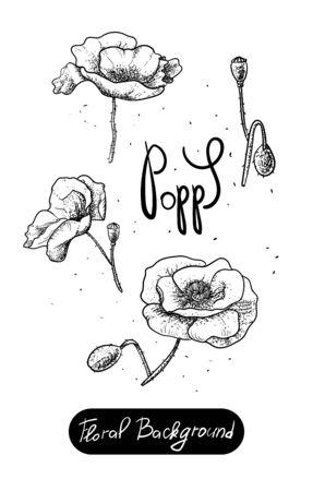 Vector set of painted flowers. Floral background. Poppy-black. Illustration