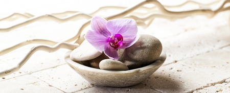 sooth: cup with mineral stones and flower for zen