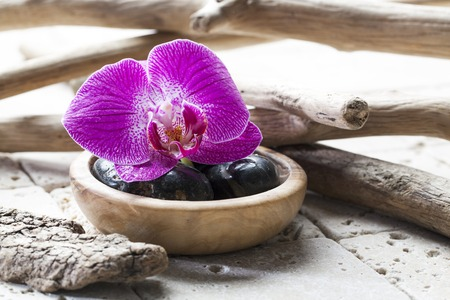 black pebbles: black pebbles and orchids for the concept of natural beauty treatment