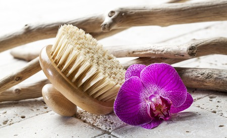 나무 바디 브러시와 자연 요소와 각질 제거 및 마사지 개념 스톡 콘텐츠