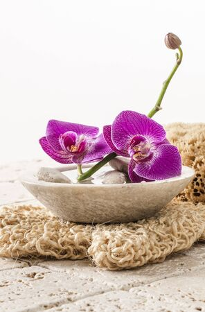 pampering: beautiful flowers for hydration and body peeling for purity and pampering