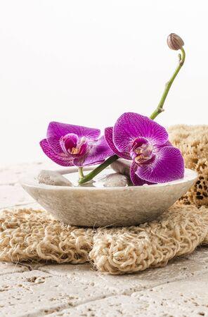 mimos: hermosas flores para la hidratación y peeling corporal para la pureza y cuidado del cuerpo Foto de archivo