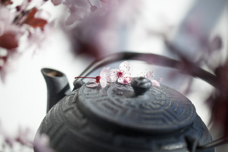 inner beauty: traditional Japanese teapot with cherry blossom flowers for zen and relaxation