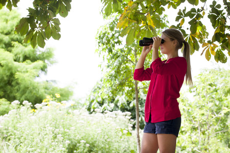 suntanned: environment observation concept - suntanned young blond woman observing birds with binoculars standing high up in shade of tree in summer