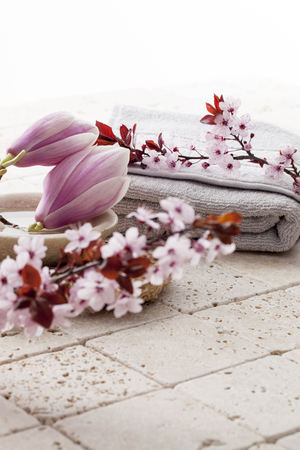 inner beauty: still-life wellbeing - magnolia and cherry blossom flowers for soft cleansing and body care at Ayurveda Spa