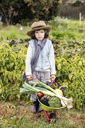 niño empujando: cabrito concepto de jardinería - niño pequeño cansado de comer verduras, empujando una pequeña carretilla llena de puerros orgánicos y ensalada con el sombrero de paja jardinero en el jardín de su casa en la estación del otoño, vista al aire libre