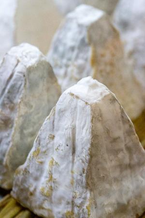 queso cabra: queso de cabra gastronómica en forma piramidal llamada Pouligny St Pierre