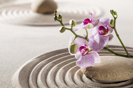 orchidee: bellissimi fiori e ciottoli nel mezzo delle onde puri in sabbia per il concetto di femminilità o il benessere Archivio Fotografico