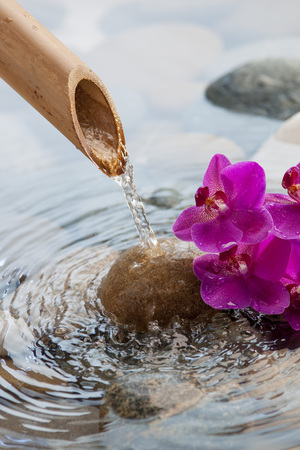 beautiful water environment with beautiful pebbles, pink orchids and bamboo pipe for source of peace and beauty Banco de Imagens