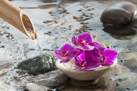 cup of orchids in running water for beauty spa and relaxation in feng shui environment