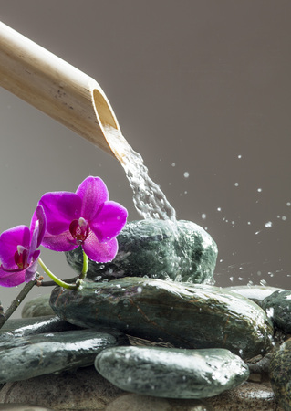 pink orchid next to water source with beautiful pebbles, pink orchids and bamboo pipe for peace and relaxation