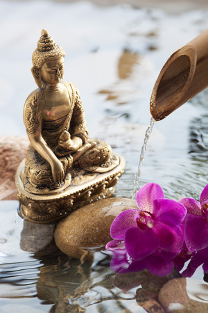 offering next to Buddha for inner beauty with beautiful Buddha in water environment with pebbles, orchids and source of peace and meditation