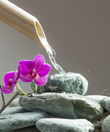 running water for beauty with beautiful pebbles, pink orchids and bamboo pipe for source of peace and relaxation